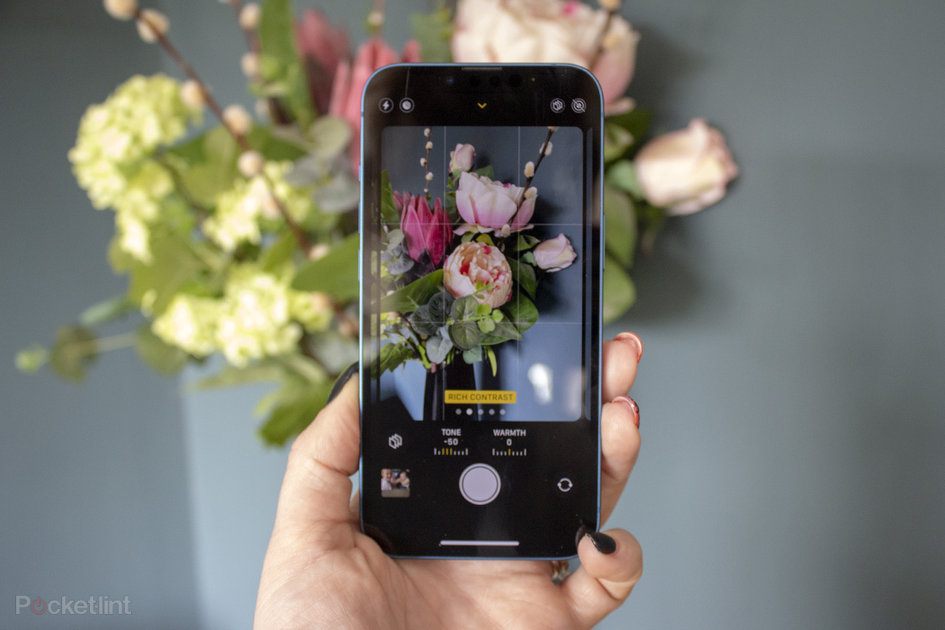 158461 phones news feature what are photographic styles and how do you use them on iphone image1 ynzr3vyafe